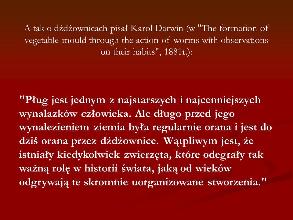 A tak o dżdżownicach pisał Karol Darwin (w