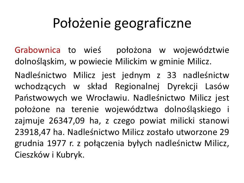 Położenie geograficzne Grabownica to wieś położona w województwie dolnośląskim, w powiecie Milickim w gminie Milicz. Nadleśnictwo Milicz jest jednym z
