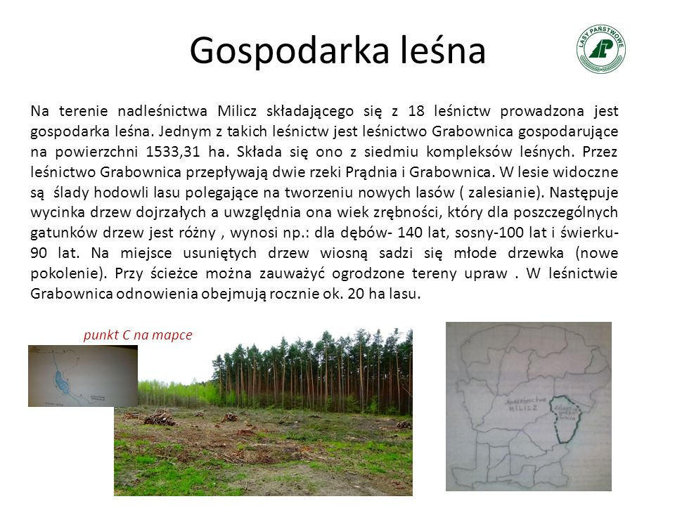 Gospodarka leśna Na terenie nadleśnictwa Milicz składającego się z 18 leśnictw prowadzona jest gospodarka leśna. Jednym z takich leśnictw jest leśnict