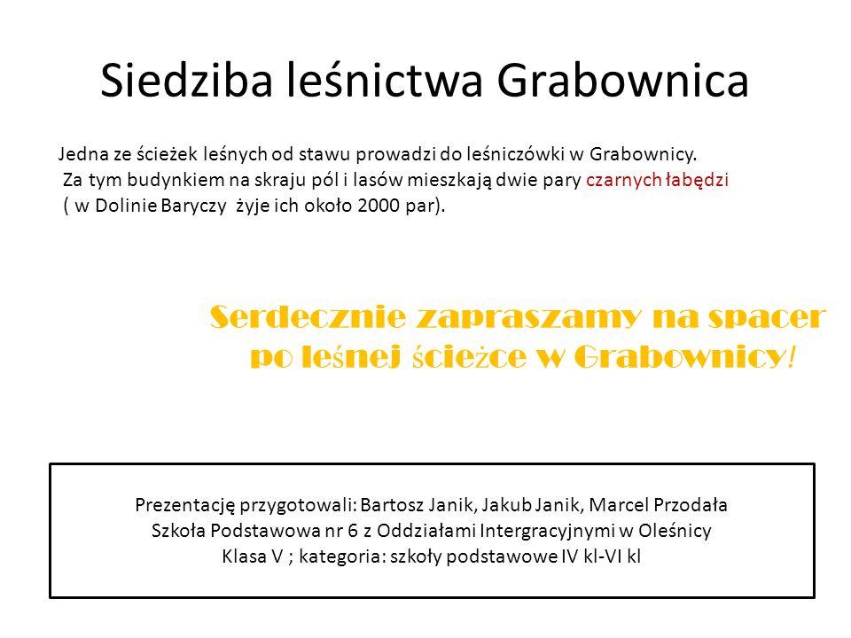 Siedziba leśnictwa Grabownica Jedna ze ścieżek leśnych od stawu prowadzi do leśniczówki w Grabownicy.