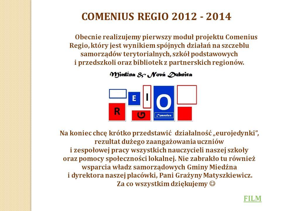 Obecnie realizujemy pierwszy moduł projektu Comenius Regio, który jest wynikiem spójnych działań na szczeblu samorządów terytorialnych, szkół podstawowych i przedszkoli oraz bibliotek z partnerskich regionów.