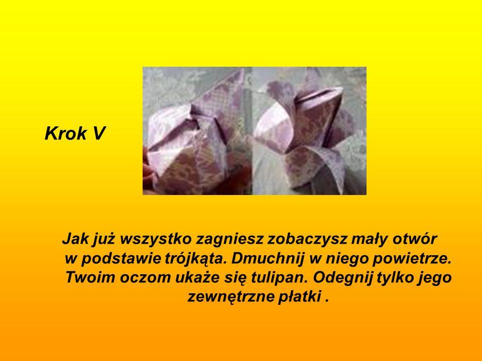 Krok V Jak już wszystko zagniesz zobaczysz mały otwór w podstawie trójkąta.