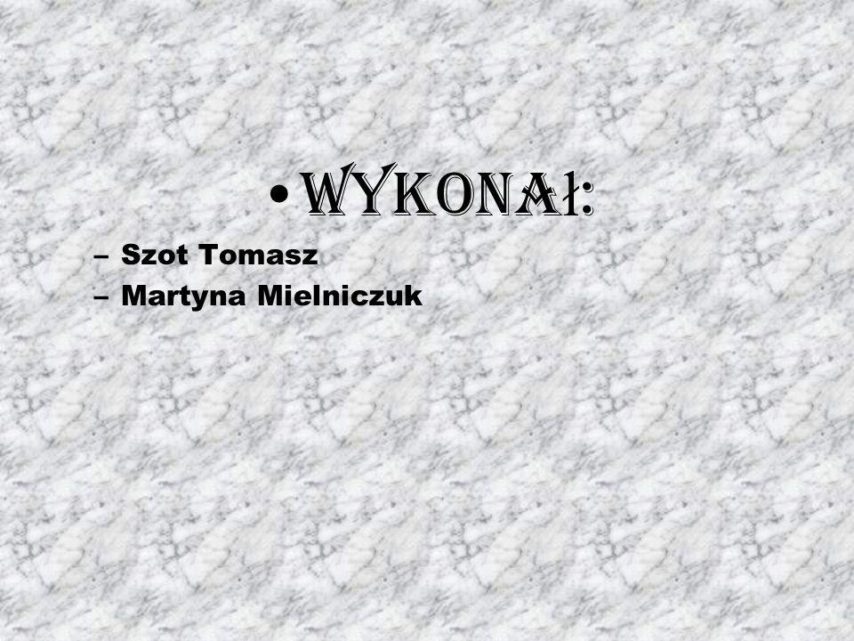 Wykona ł : –Szot Tomasz –Martyna Mielniczuk