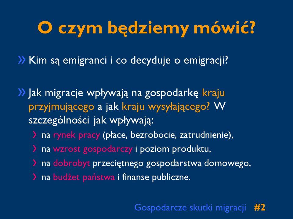 Gospodarcze skutki migracji#3#3 Co wiemy o migrantach.