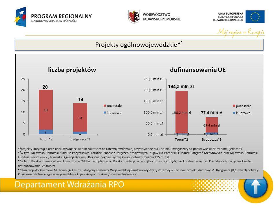 * 1 projekty dotyczące oraz oddziaływujące swoim zakresem na całe województwo, przypisywane dla Torunia i Bydgoszczy na podstawie siedziby danej jedno