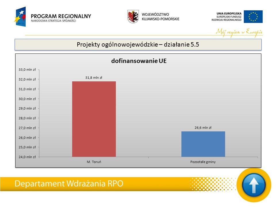 Projekty ogólnowojewódzkie – działanie 5.5