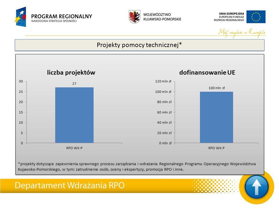 *projekty dotyczące zapewnienia sprawnego procesu zarządzania i wdrażania Regionalnego Programu Operacyjnego Województwa Kujawsko-Pomorskiego, w tym: