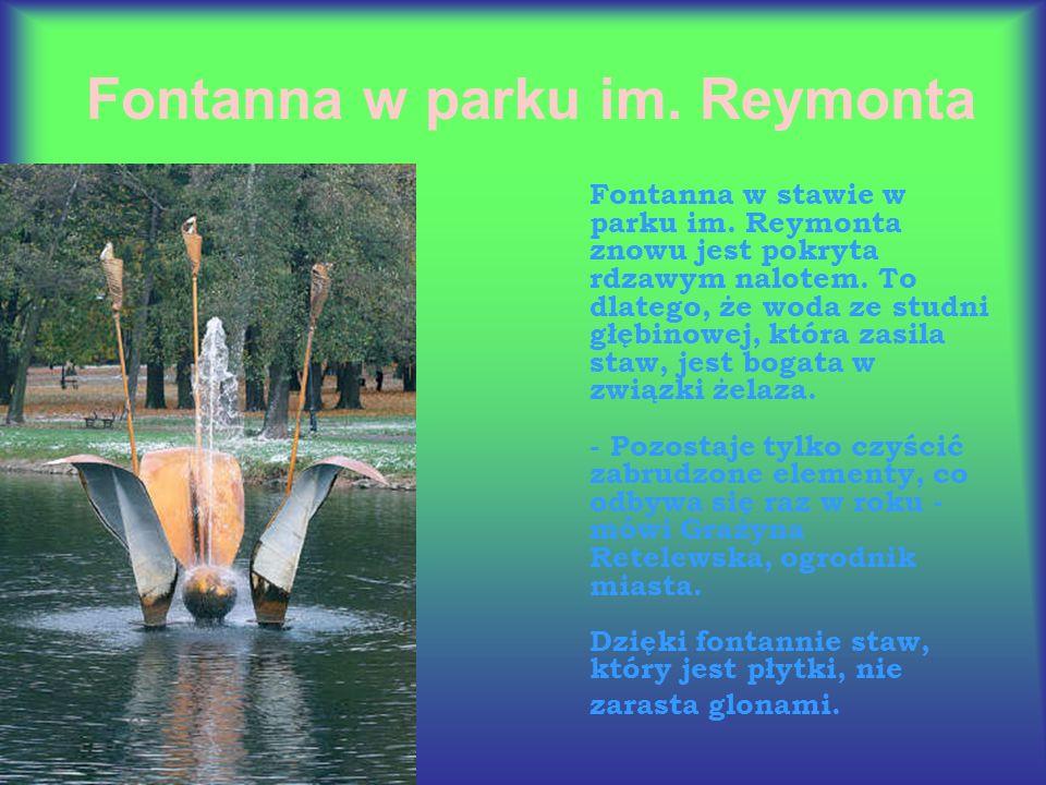 Fontanna w stawie w parku im. Reymonta znowu jest pokryta rdzawym nalotem.