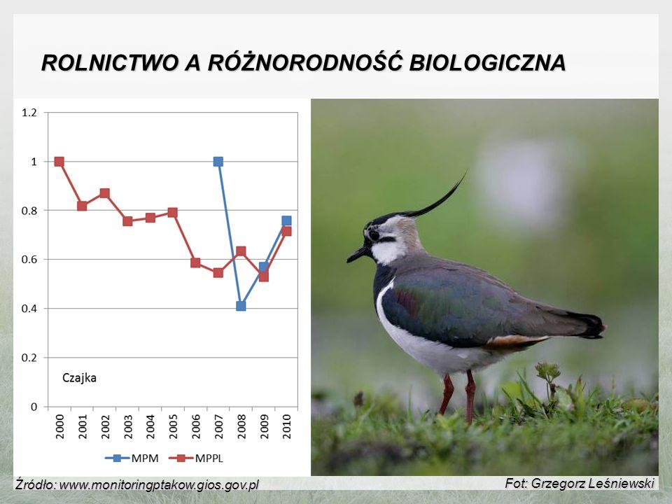 ROLNICTWO A RÓŻNORODNOŚĆ BIOLOGICZNA Fot: Grzegorz Leśniewski Źródło: www.monitoringptakow.gios.gov.pl