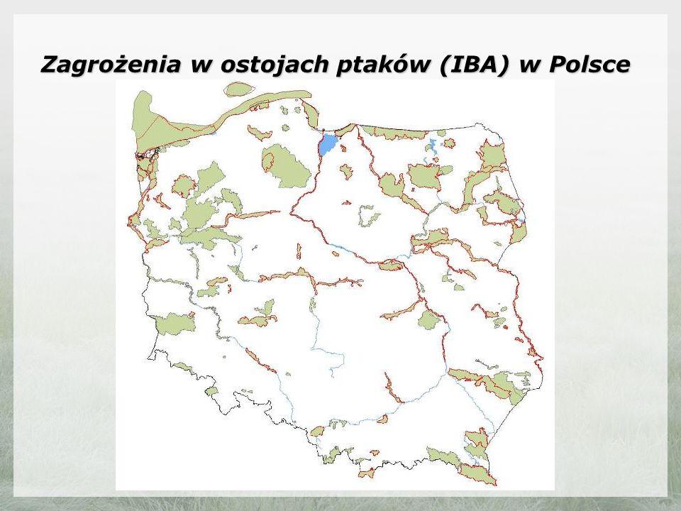 Zagrożenia w ostojach ptaków (IBA) w Polsce