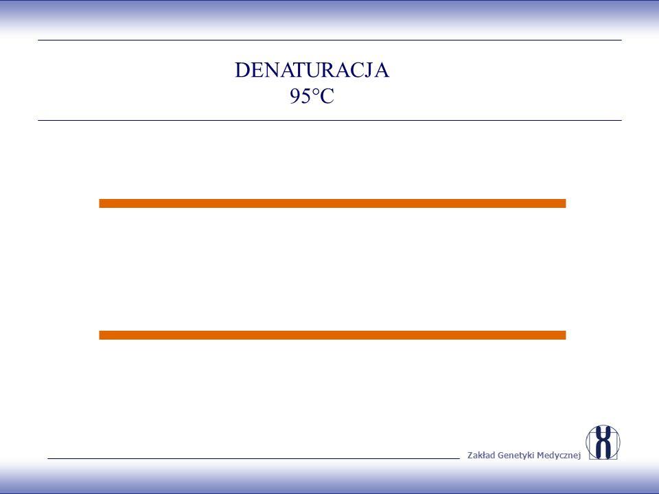 Zakład Genetyki Medycznej DENATURACJA 95°C