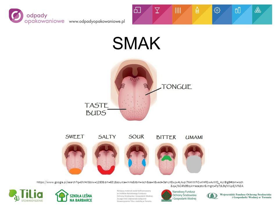 SMAK https://www.google.pl/search q=SMAK&biw=1280&bih=631&source=lnms&tbm=isch&sa=X&ved=0ahUKEwjw4LXvpI7KAhWFiCwKHR2wAxMQ_AUIBigB#tbm=isch &q=j%C4%99zyk+receptor&imgrc=FpTdL9qNVLpEjM%3A