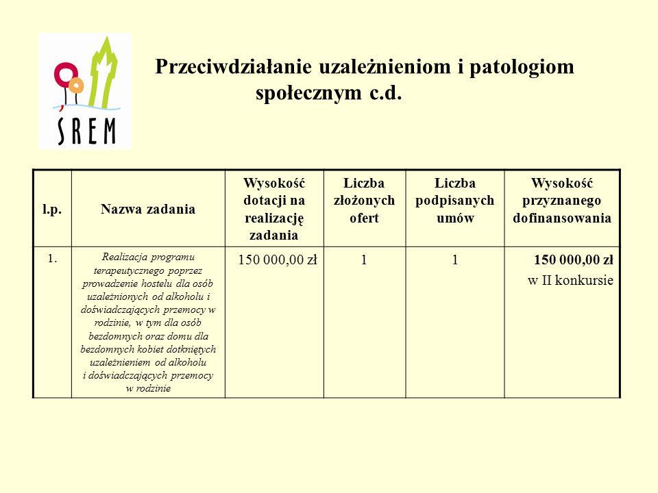 Prowadzenie pozalekcyjnych zajęć sportowych z elementami profilaktyki dla dzieci i młodzieży z grupy ryzyka c.d.
