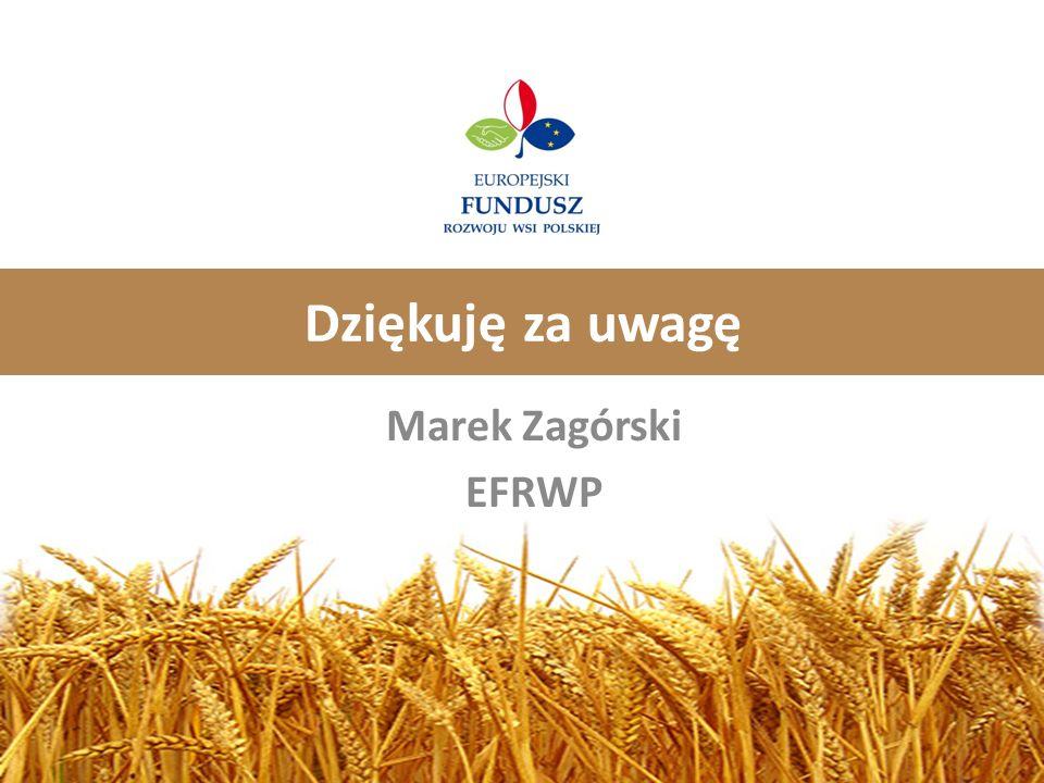 Dziękuję za uwagę Marek Zagórski EFRWP