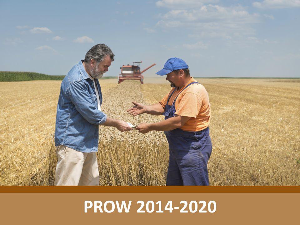 Rozkład środków finansowych na działania w PROW 2014-2020 DziałaniaKwota w mld EUR środowiskowe 3,06 modernizacja 2,50 zobowiązania 1,35 leader 0,51 pomoc techniczna 0,41 działania pozostałe 3,08 Opracowanie własne po przesunięciu środków do I filaru WPR