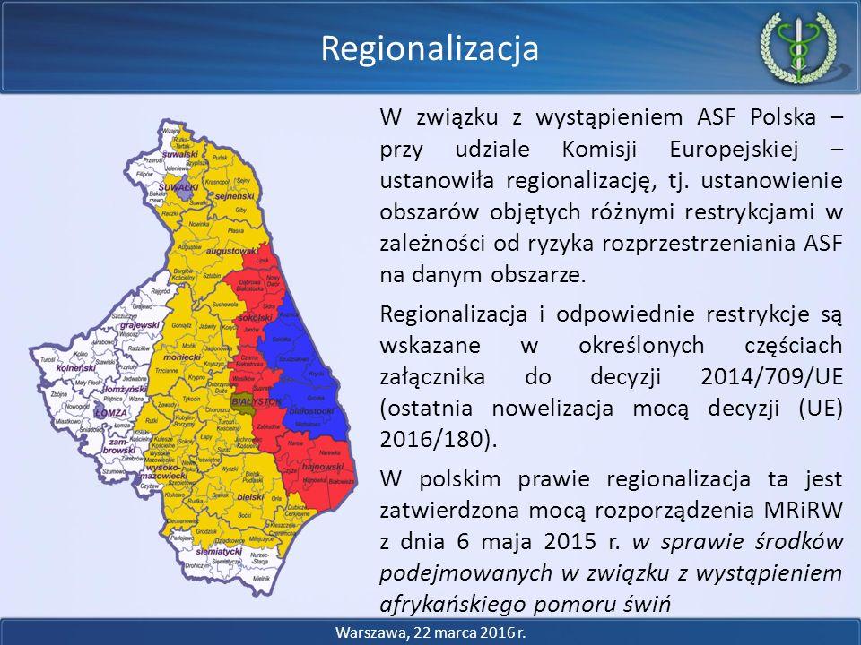 Restrykcje handlowe (aktualnie nowelizowane) - wieprzowina Obszar zagrożenia: o Zakaz wysyłki wieprzowiny pozyskanej w obszarze zagrożenia poza ten obszar o Zakaz wysyłki wieprzowiny pozyskanej ze świń pozyskanych z obszaru zagrożenia poza terytorium RP (możliwy obrót na terytorium kraju) Obszar objęty ograniczeniami: o Ograniczenia odnośnie wysyłki wieprzowiny pozyskanej ze świń pozyskanych z obszaru zagrożenia poza terytorium RP (świnie, z których pozyskana jest wieprzowina muszą spełniać wymogi jak dla wywozu poza obszar) o Możliwy obrót na terytorium kraju Obszar ochronny: o Brak restrykcji Restrykcje handlowe Warszawa, 22 marca 2016 r.