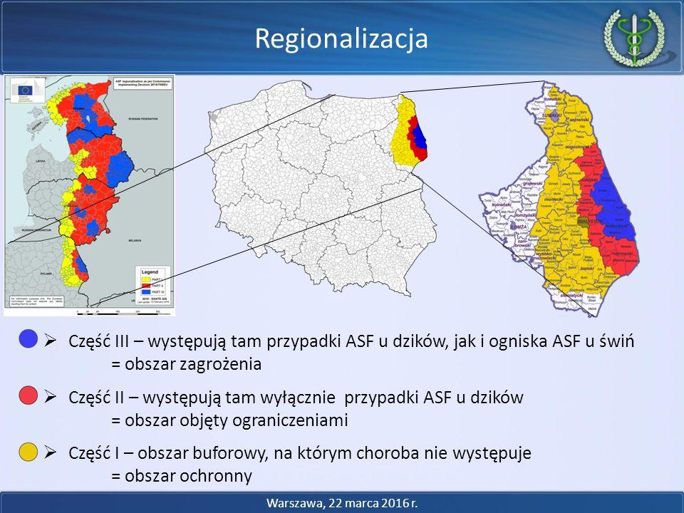  Część III – występują tam przypadki ASF u dzików, jak i ogniska ASF u świń = obszar zagrożenia  Część II – występują tam wyłącznie przypadki ASF u dzików = obszar objęty ograniczeniami  Część I – obszar buforowy, na którym choroba nie występuje = obszar ochronny Regionalizacja Warszawa, 22 marca 2016 r.