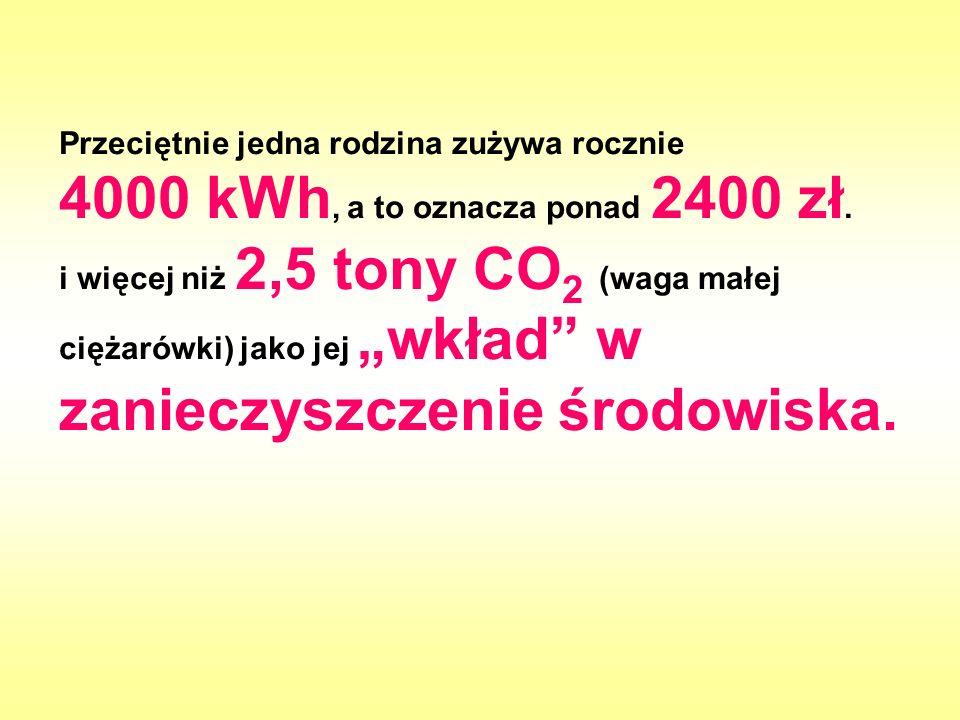 Przeciętnie jedna rodzina zużywa rocznie 4000 kWh, a to oznacza ponad 2400 zł.