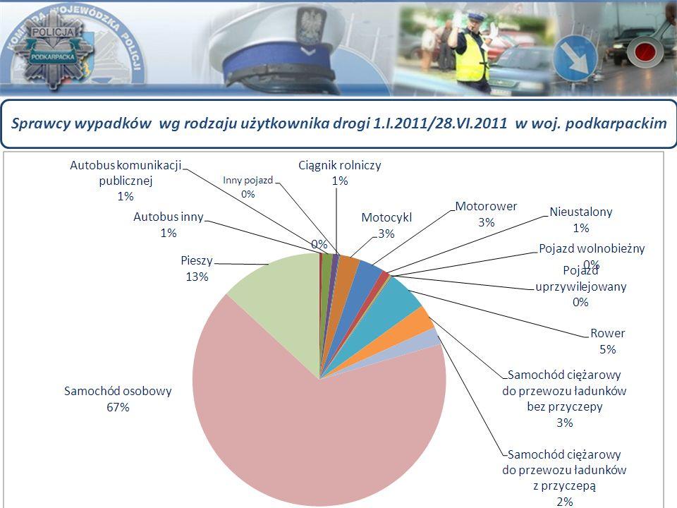 Sprawcy wypadków wg rodzaju użytkownika drogi 1.I.2011/28.VI.2011 w woj. podkarpackim