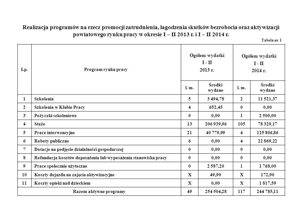 Realizacja programów na rzecz promocji zatrudnienia, łagodzenia skutków bezrobocia oraz aktywizacji powiatowego rynku pracy w okresie I – II 2013 r.