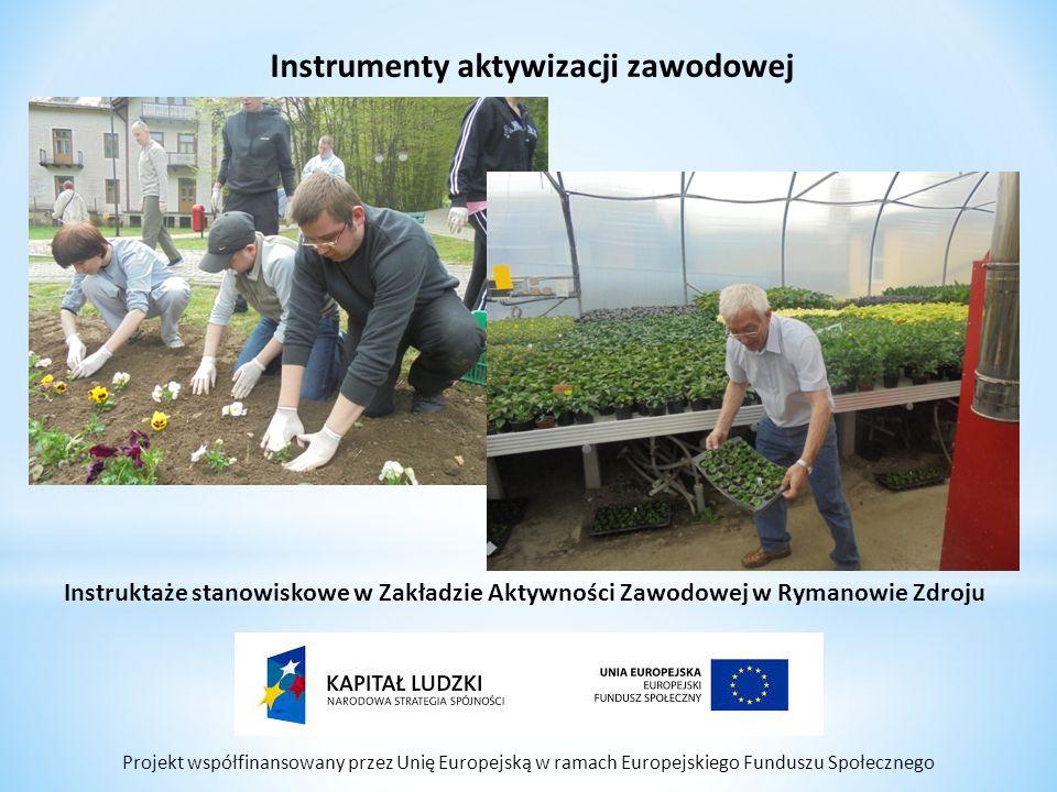Projekt współfinansowany przez Unię Europejską w ramach Europejskiego Funduszu Społecznego Instrumenty aktywizacji zawodowej Instruktaże stanowiskowe