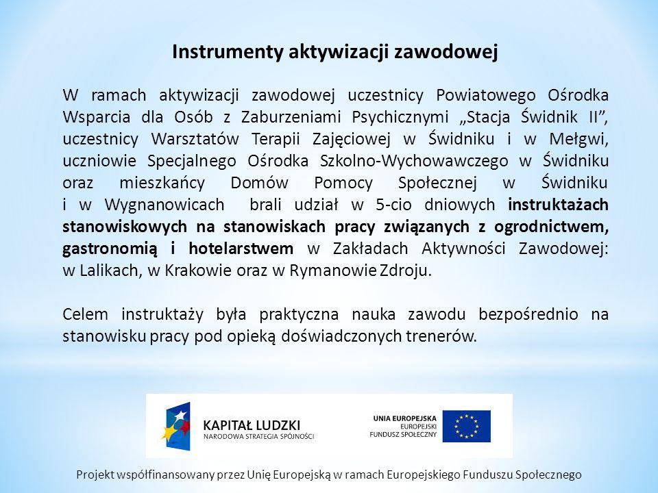Projekt współfinansowany przez Unię Europejską w ramach Europejskiego Funduszu Społecznego Instrumenty aktywizacji zawodowej W ramach aktywizacji zawo