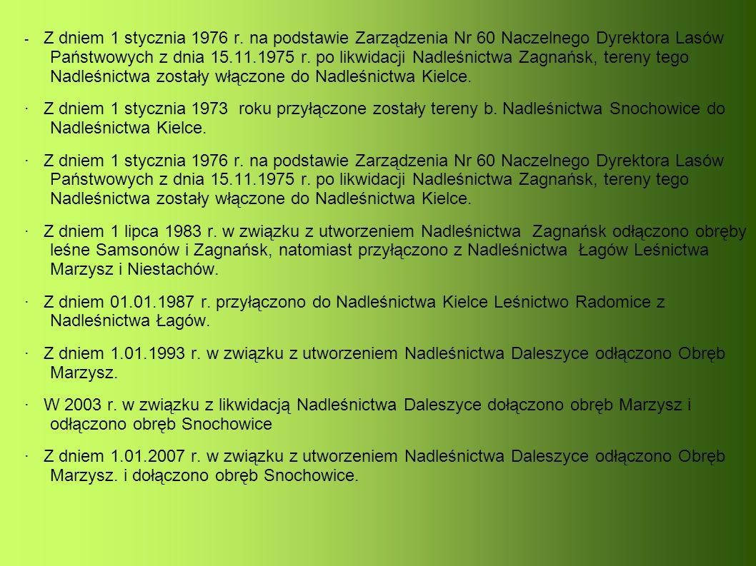 Położenie Nadleśnictwa Kielce Nadleśnictwo Kielce podzielone jest na 12 leśnictw.