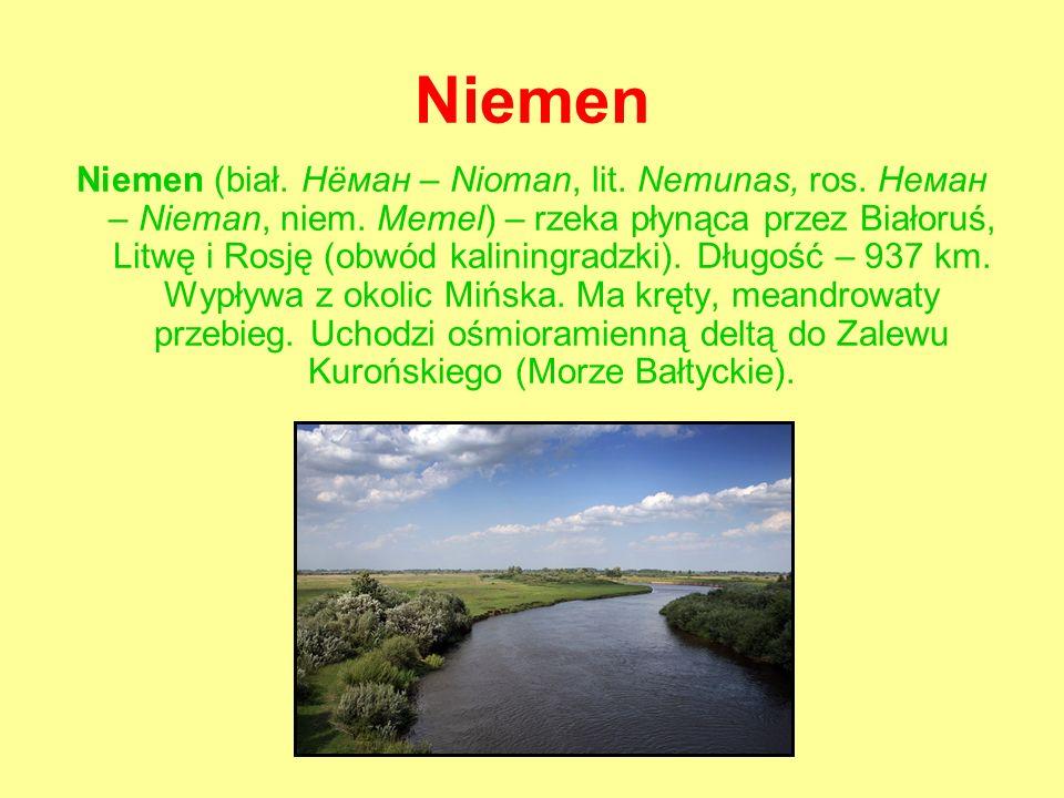 Niemen Niemen (biał. Нёман – Nioman, lit. Nemunas, ros.