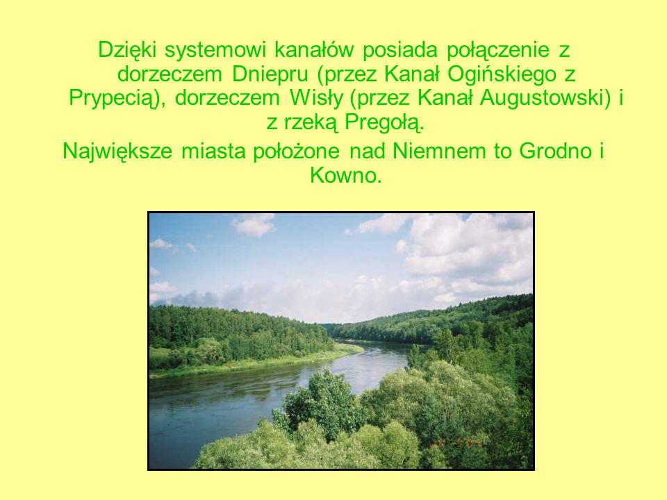Dzięki systemowi kanałów posiada połączenie z dorzeczem Dniepru (przez Kanał Ogińskiego z Prypecią), dorzeczem Wisły (przez Kanał Augustowski) i z rzeką Pregołą.