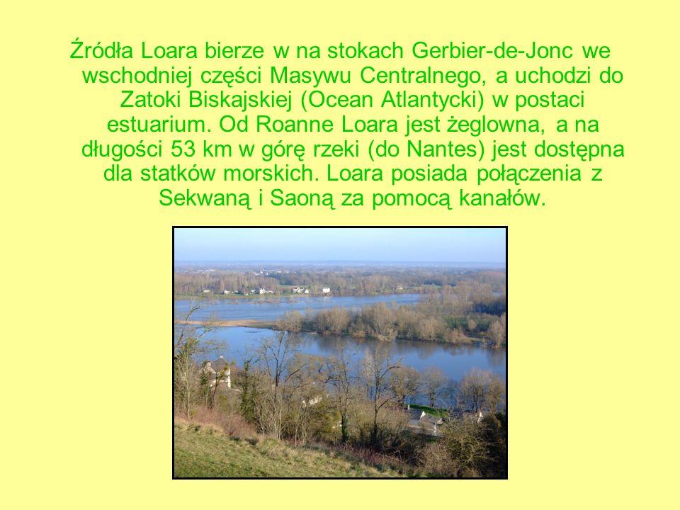 Źródła Loara bierze w na stokach Gerbier-de-Jonc we wschodniej części Masywu Centralnego, a uchodzi do Zatoki Biskajskiej (Ocean Atlantycki) w postaci estuarium.