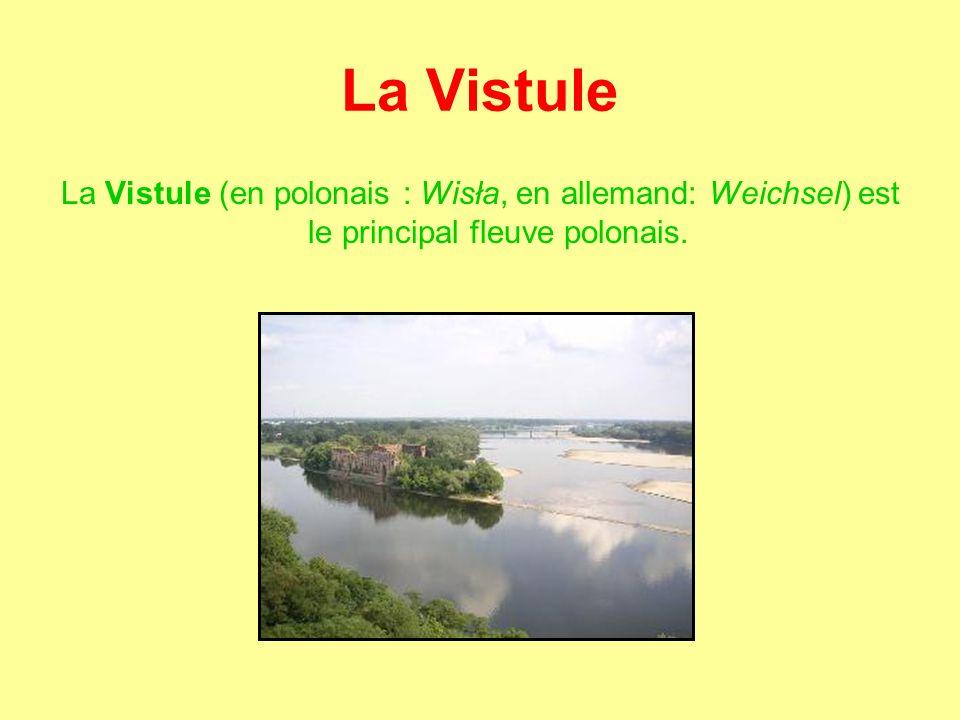 La Vistule La Vistule (en polonais : Wisła, en allemand: Weichsel) est le principal fleuve polonais.