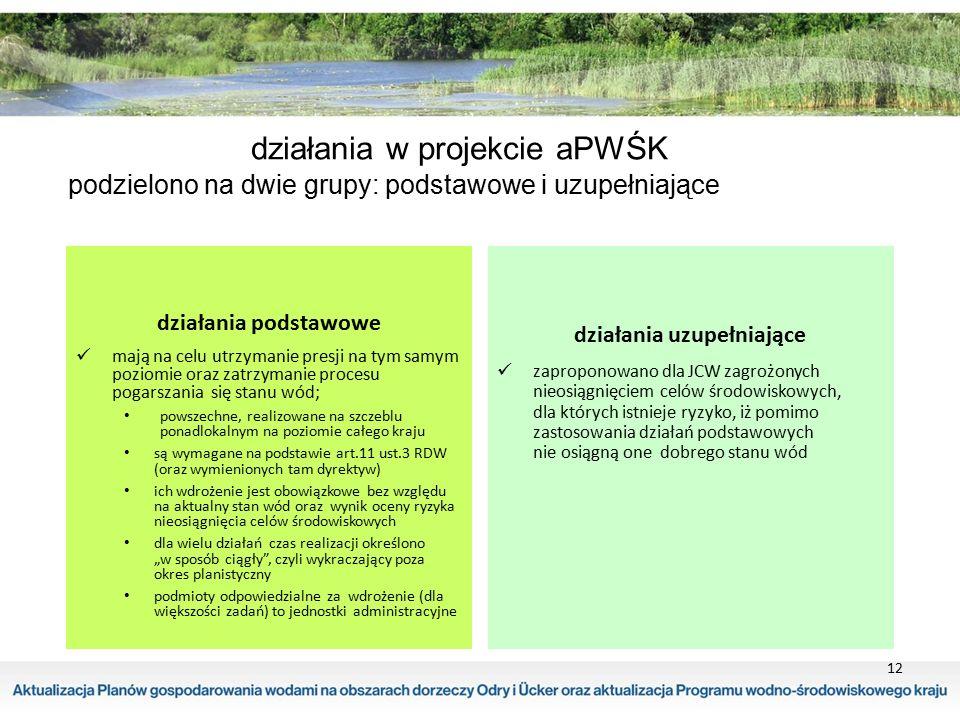 12 działania w projekcie aPWŚK podzielono na dwie grupy: podstawowe i uzupełniające działania podstawowe mają na celu utrzymanie presji na tym samym p