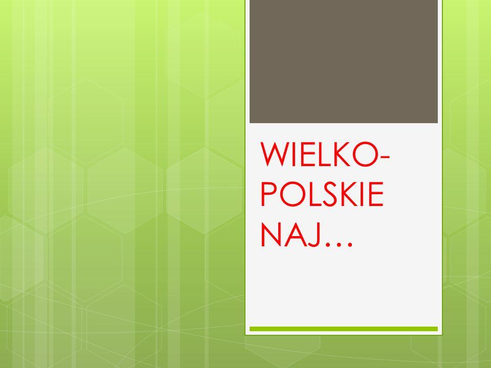 NAJWIĘKSZE MIASTO Stolicą W ielkopolski i największym miastem jest Poznań.