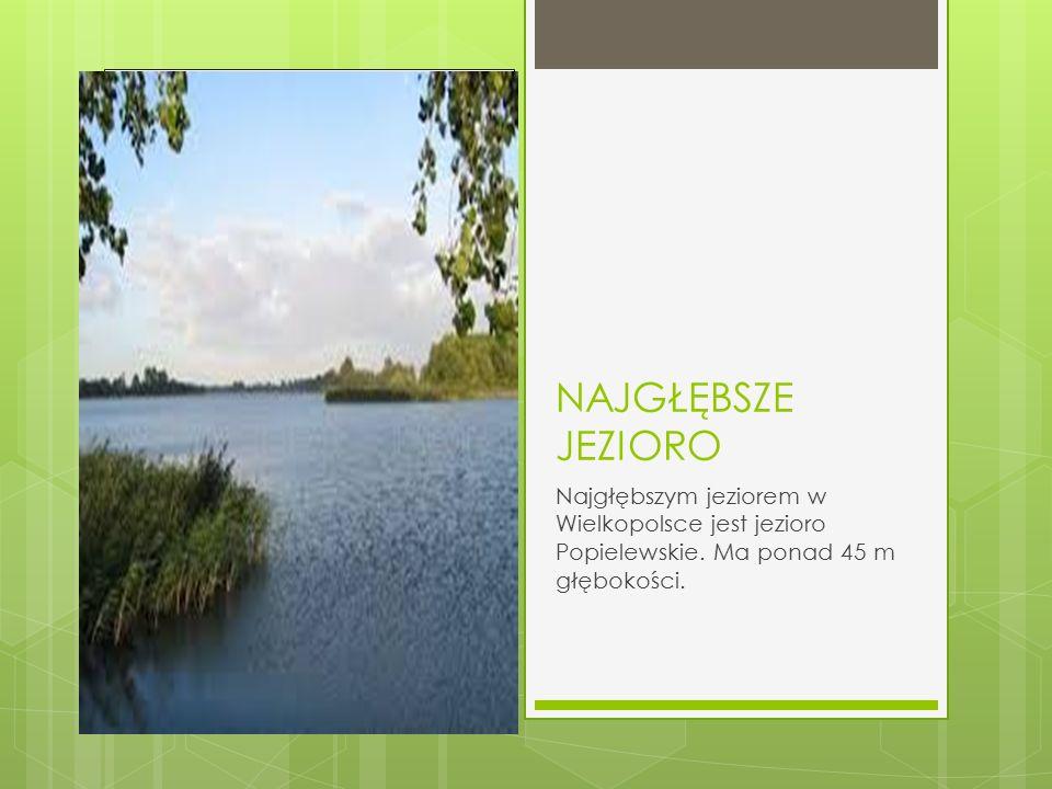 NAJGŁĘBSZE JEZIORO Najgłębszym jeziorem w Wielkopolsce jest jezioro Popielewskie. Ma ponad 45 m głębokości.