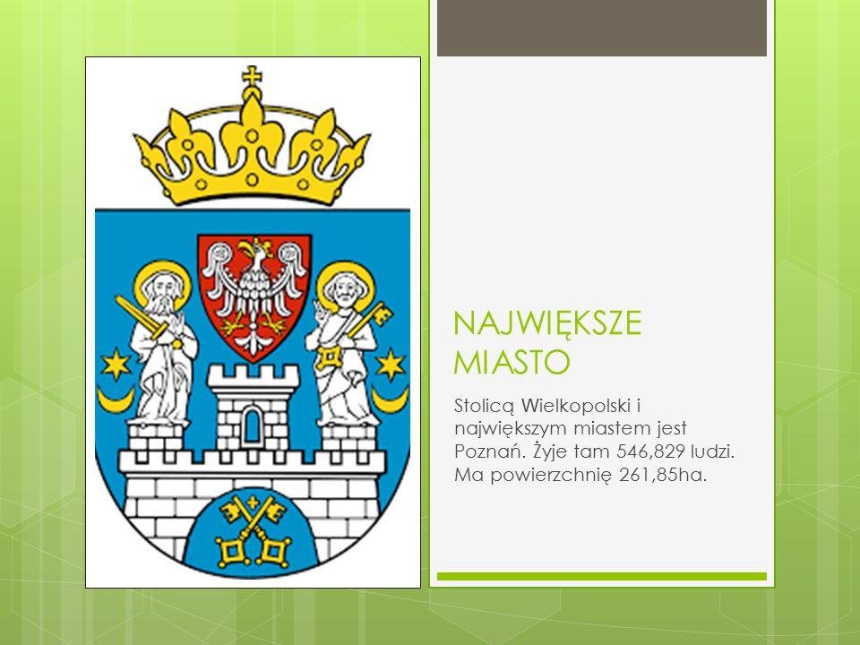 NAJWIĘKSZE MIASTO Stolicą W ielkopolski i największym miastem jest Poznań. Żyje tam 546,829 ludzi. Ma powierzchnię 261,85ha.