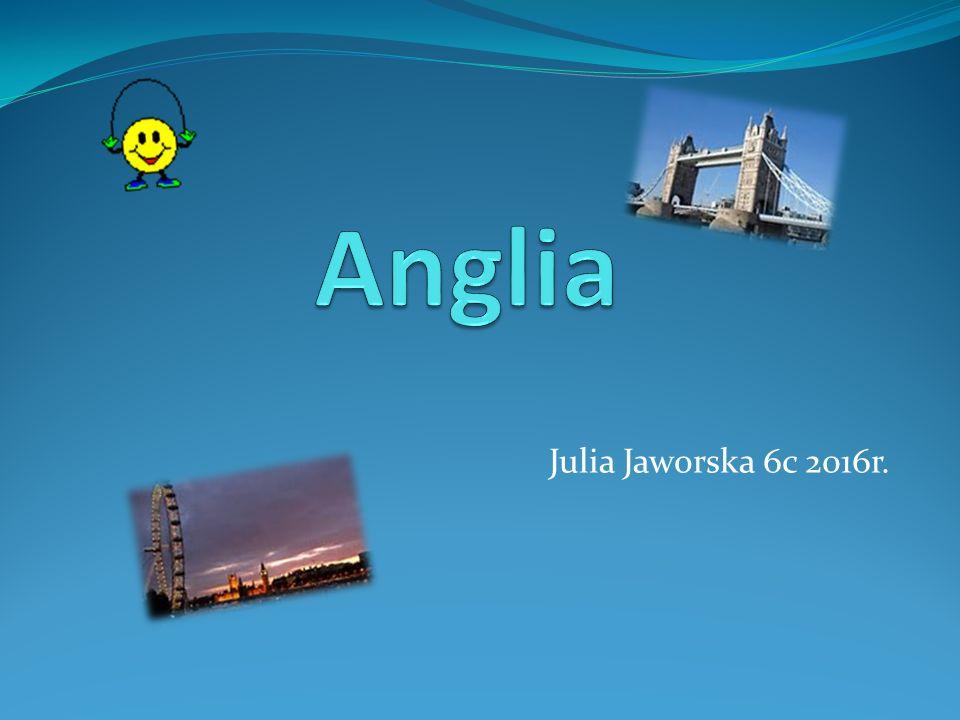 Julia Jaworska 6c 2016r.