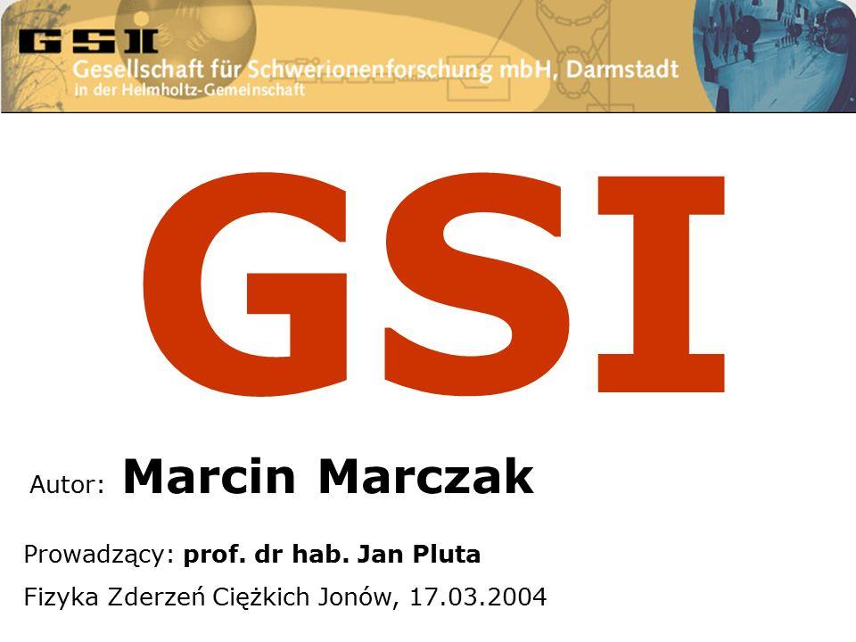 Autor: Marcin Marczak Prowadzący: prof. dr hab.