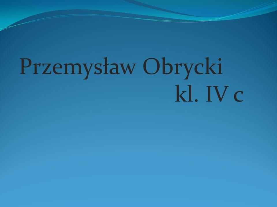 Przemysław Obrycki kl. IV c