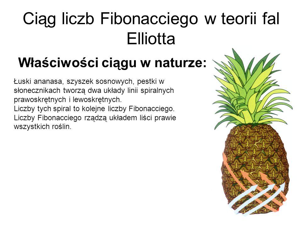 Ciąg liczb Fibonacciego w teorii fal Elliotta Właściwości ciągu w naturze: Łuski ananasa, szyszek sosnowych, pestki w słonecznikach tworzą dwa układy linii spiralnych prawoskrętnych i lewoskrętnych.