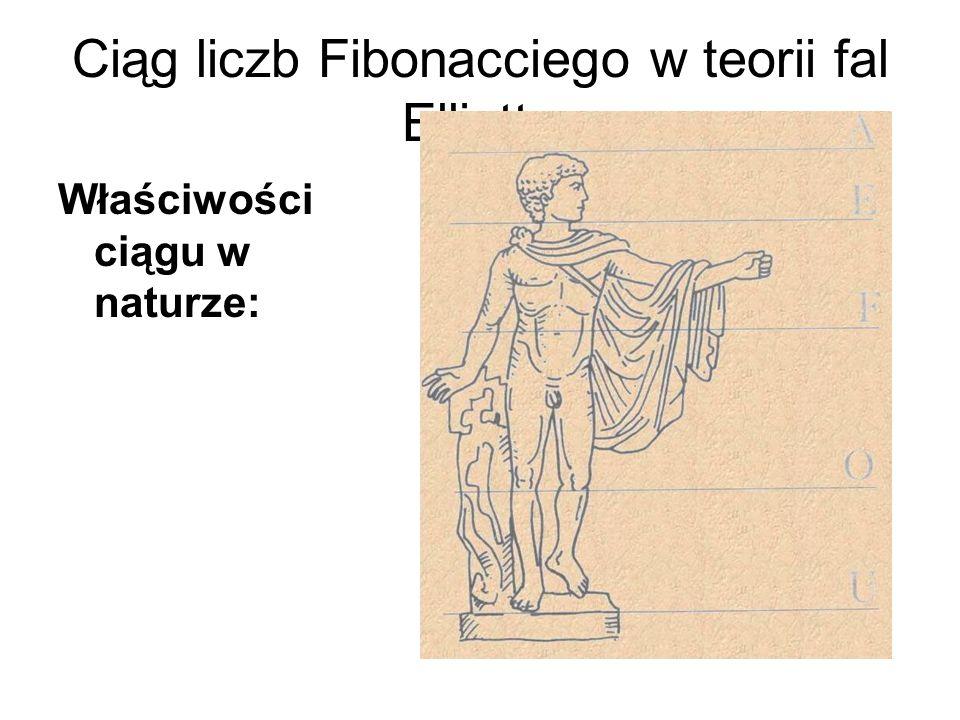 Ciąg liczb Fibonacciego w teorii fal Elliotta Właściwości ciągu w naturze: