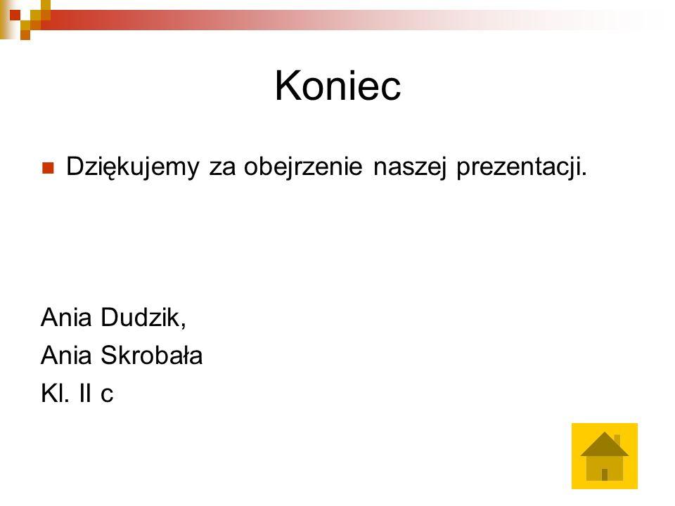Koniec Dziękujemy za obejrzenie naszej prezentacji. Ania Dudzik, Ania Skrobała Kl. II c