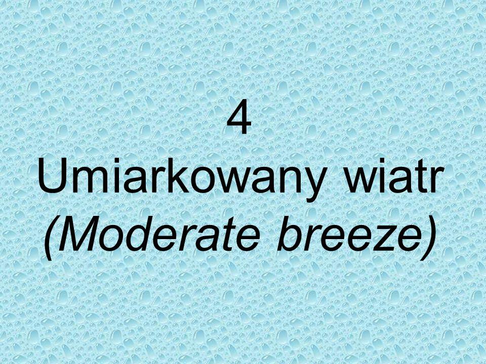 4 Umiarkowany wiatr (Moderate breeze)