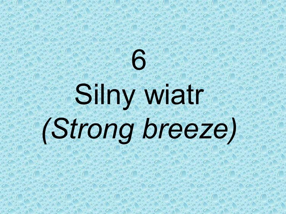 6 Silny wiatr (Strong breeze)