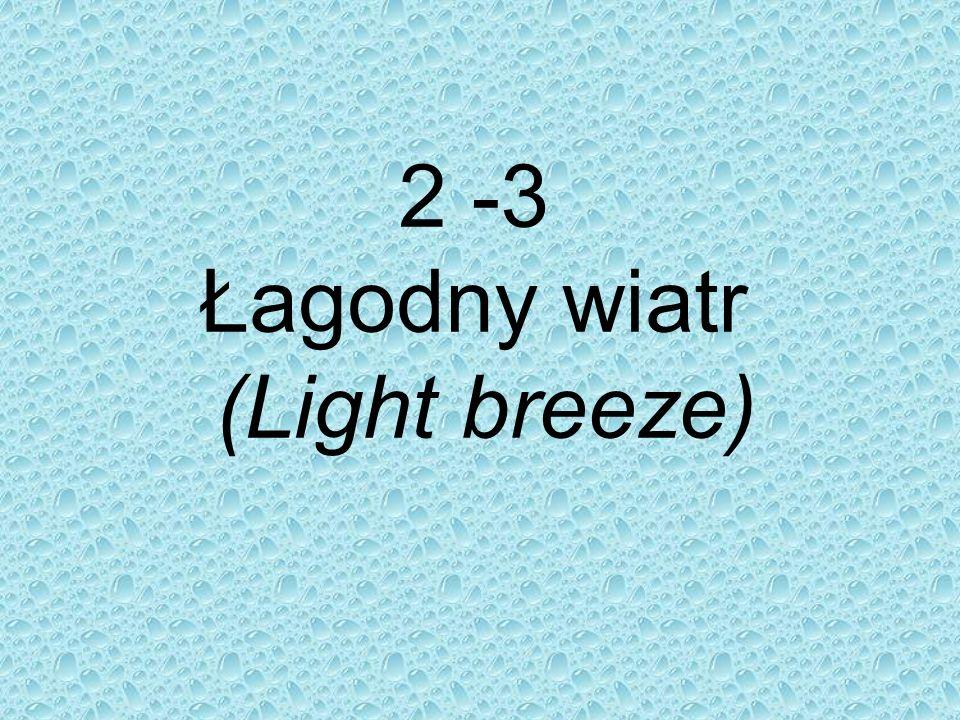 2 -3 Łagodny wiatr (Light breeze)