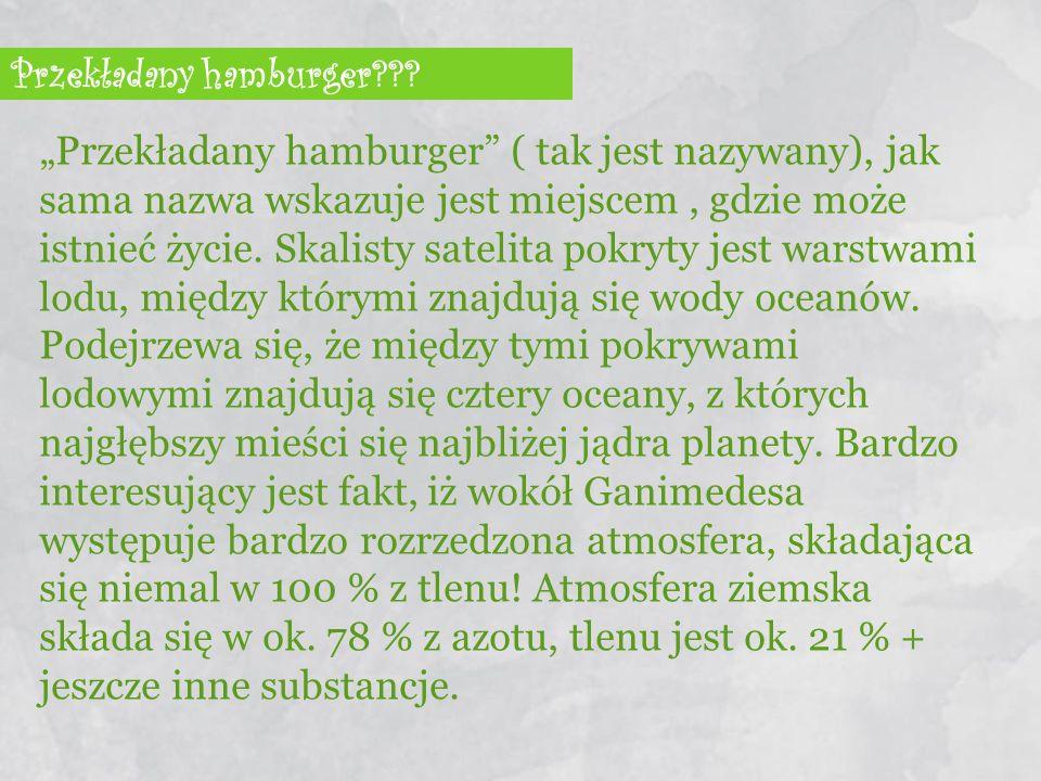 """Przekładany hamburger??? """"Przekładany hamburger"""" ( tak jest nazywany), jak sama nazwa wskazuje jest miejscem, gdzie może istnieć życie. Skalisty satel"""