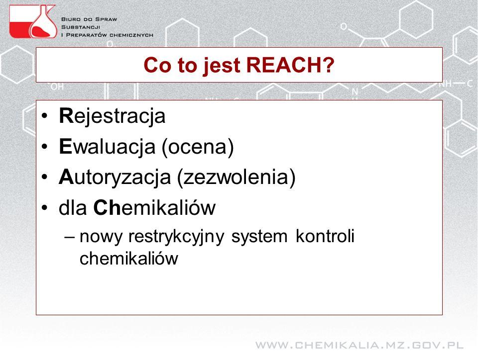 Najpilniejsze działania Inwentaryzacja substancji (> 1 tony rocznie) Identyfikacja produkowanych substancji Identyfikacja substancji sprowadzanych spoza UE (EOG) –W ich postaci własnej –W preparatach –W wyrobach Czy znane są ich nazwy chemiczne.