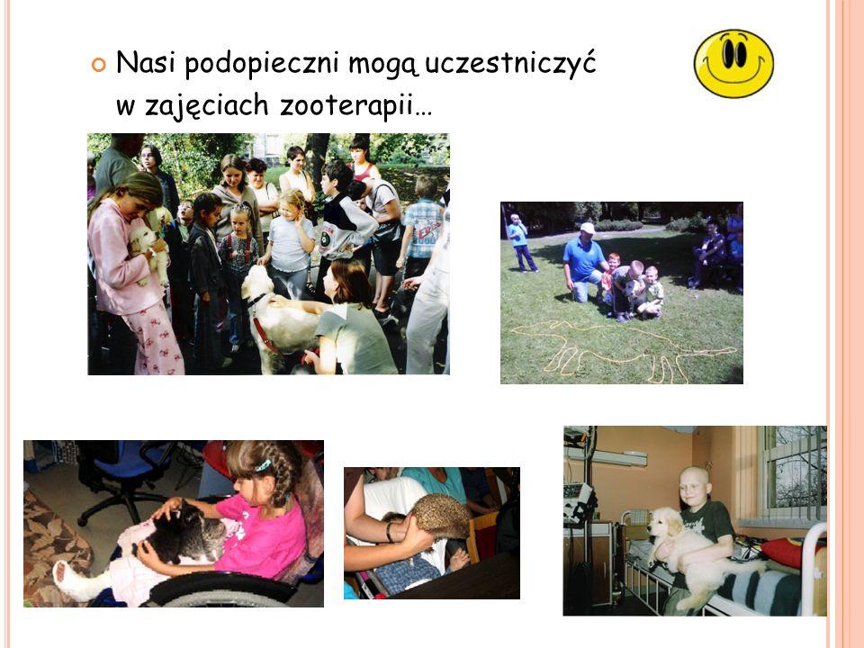 Nasi podopieczni mogą uczestniczyć w zajęciach zooterapii…