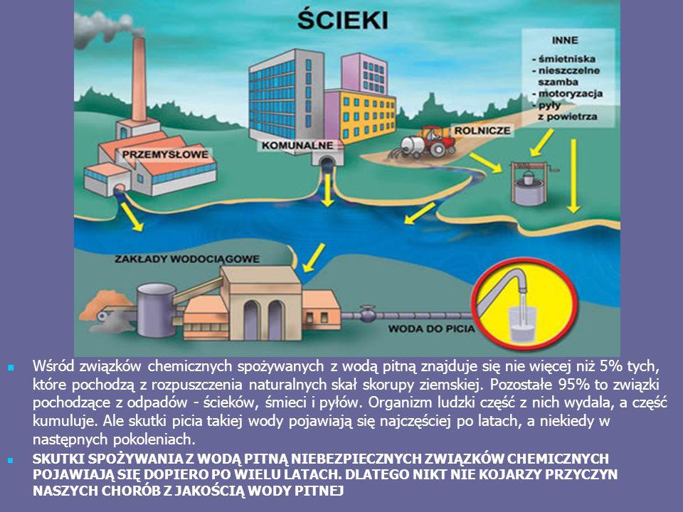 Wśród związków chemicznych spożywanych z wodą pitną znajduje się nie więcej niż 5% tych, które pochodzą z rozpuszczenia naturalnych skał skorupy ziemskiej.