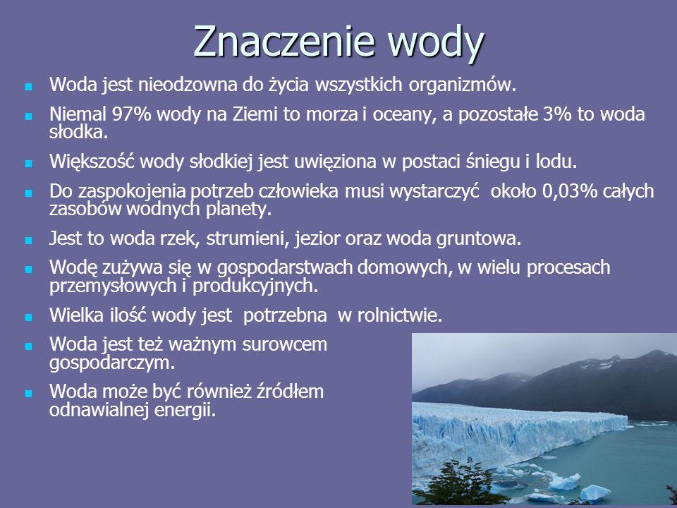 Znaczenie wody Woda jest nieodzowna do życia wszystkich organizmów.