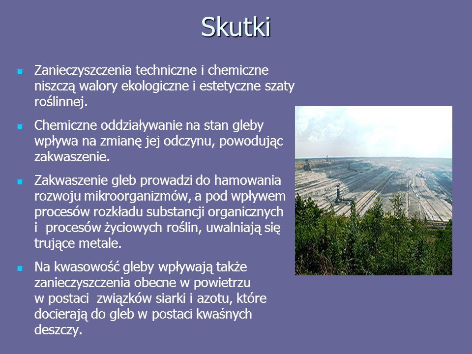 Skutki Zanieczyszczenia techniczne i chemiczne niszczą walory ekologiczne i estetyczne szaty roślinnej.